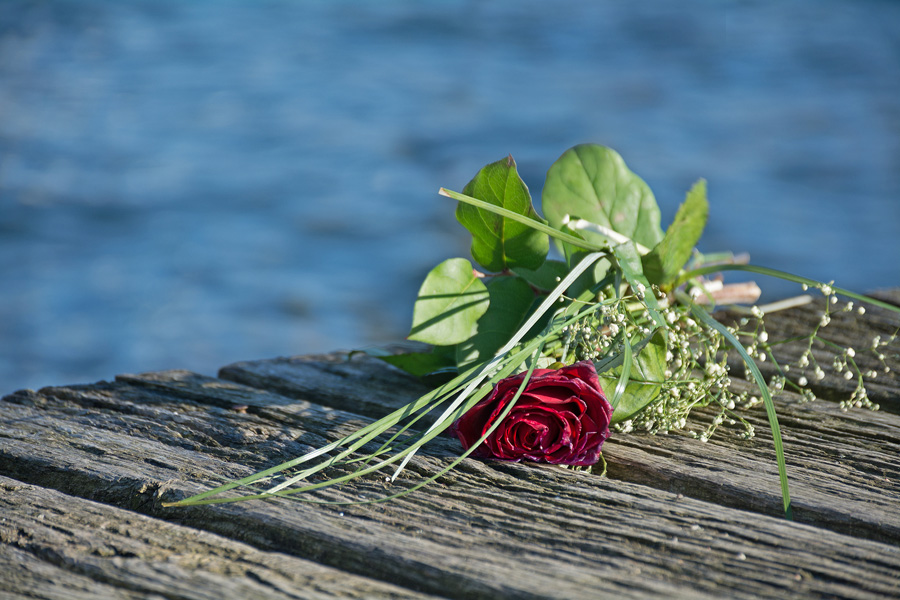 Last Love Greeting, Rose Bouquet On The Old Wooden Pier After A